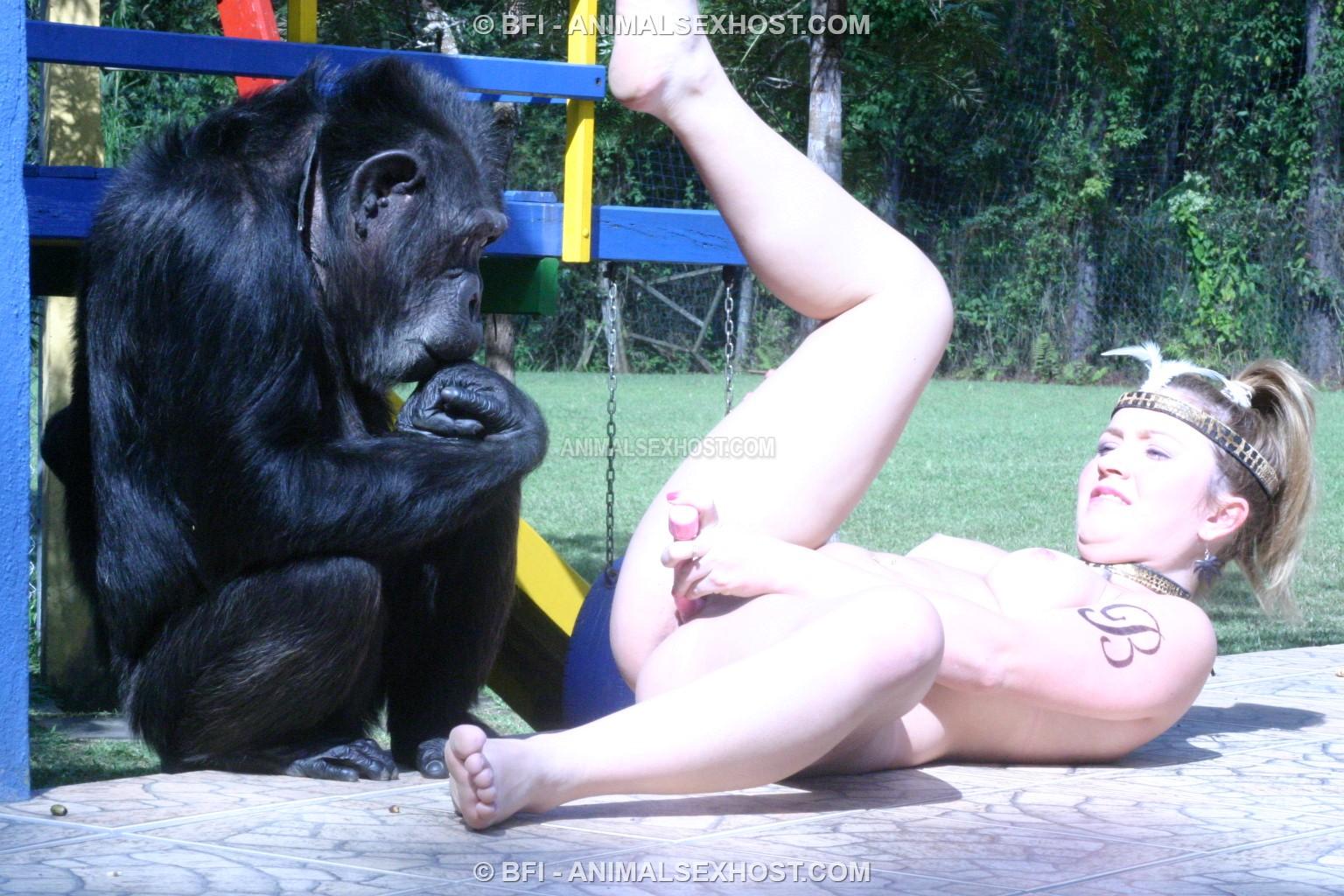 Critically endangered baby chimpanzee born